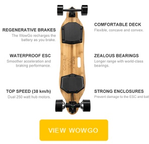 WOWGO Board review and coupon code