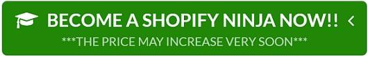 shopify ninja masterclass kevin david coupon code