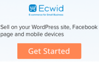 ecwid online store coupon code