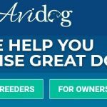 avidog courses coupon code