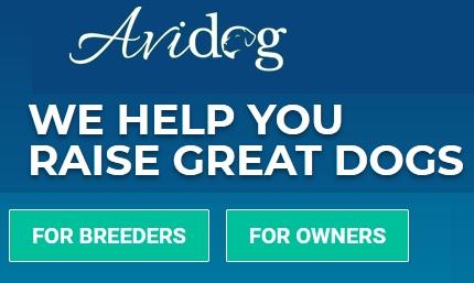 avidog courses coupon code