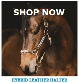 horse education company halter coupon code